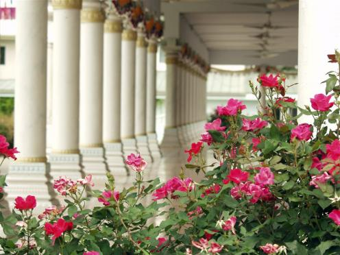 Temple-Columns-and-flowers.preview